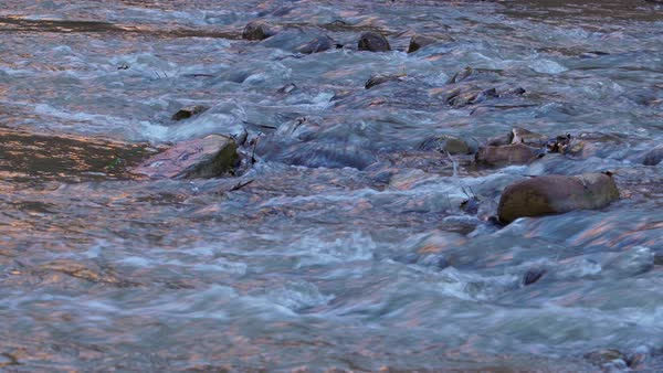 View of small ripples in the Virgin River in Utah. Royalty-free stock video