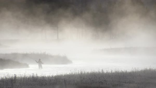 Fly fisherman casting as fog rises from river Royalty-free stock video