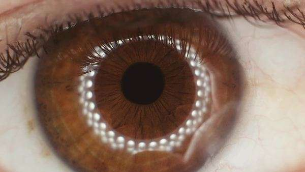 Extreme close up shot of the iris of the hyman eye of a male, contracting. LED ring light mirrored in the pupil. Royalty-free stock video