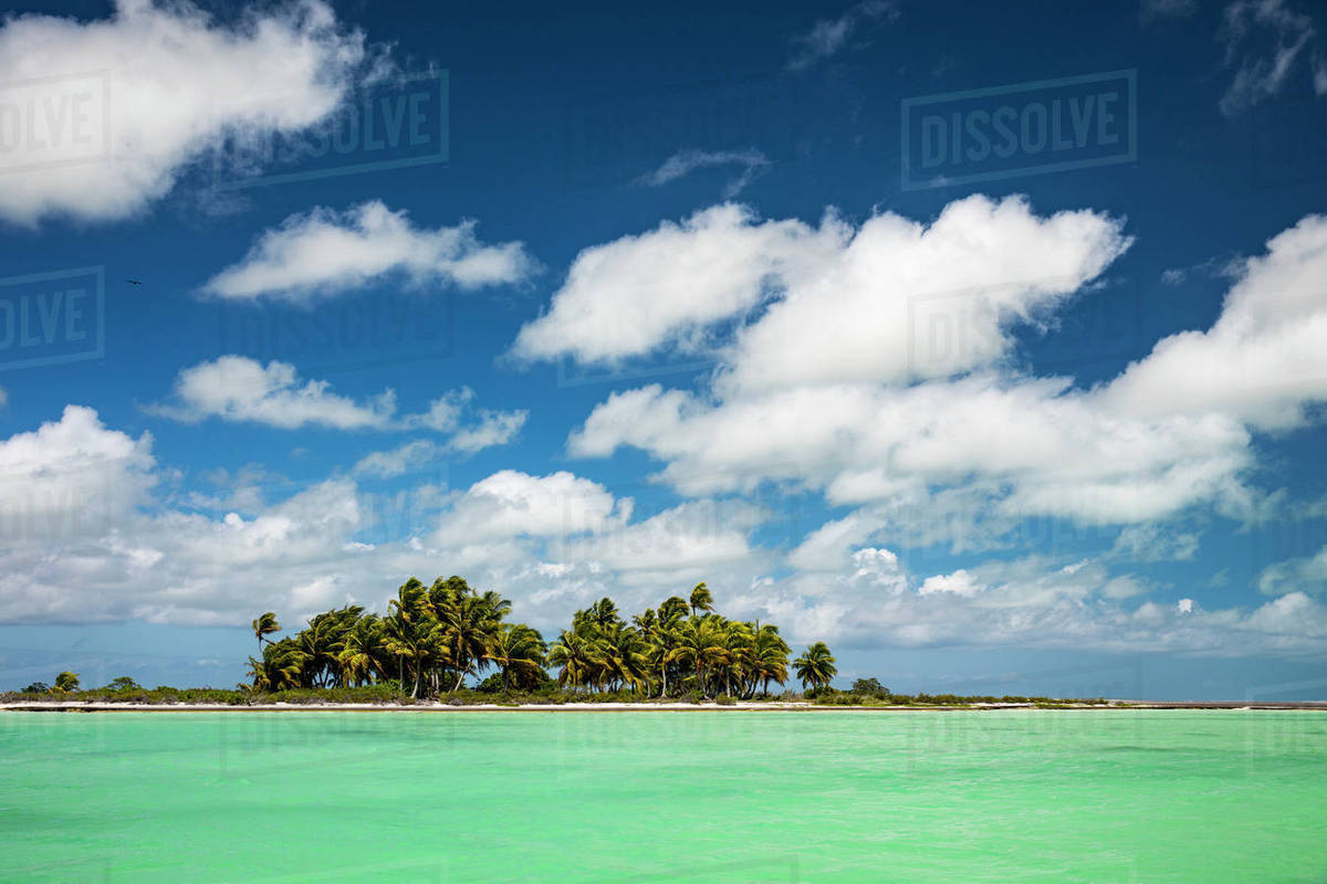 Kiribati Atoll, Christmas Island - Stock Photo - Dissolve