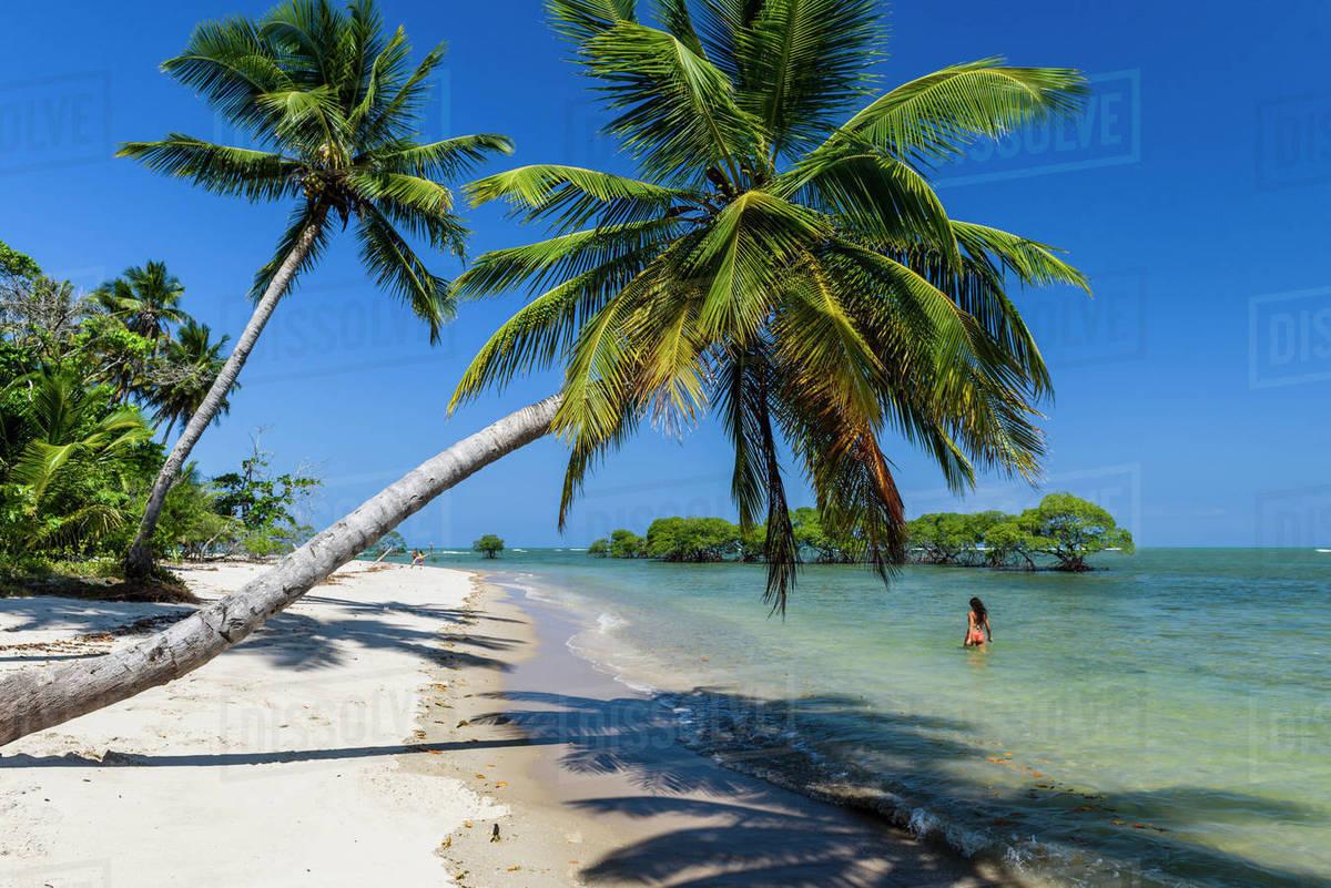 Coconut Island Beach Hawaii