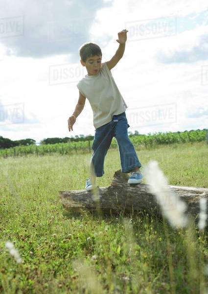 Boy standing on log Royalty-free stock photo