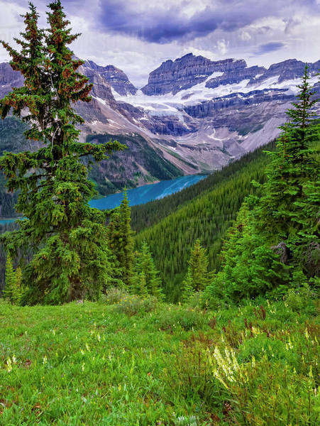 View of a blue lake, green forests, and snow-capped mountains Royalty-free stock photo