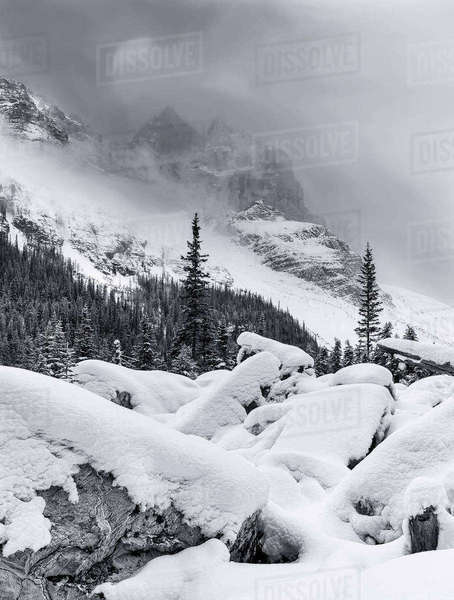 Black and white shot of Plain of 6 Glaciers in Banff National Park, Alberta, Canada. Royalty-free stock photo