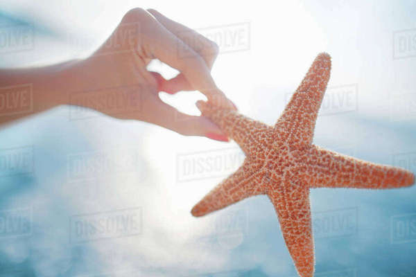 Woman holding starfish at the beach Royalty-free stock photo