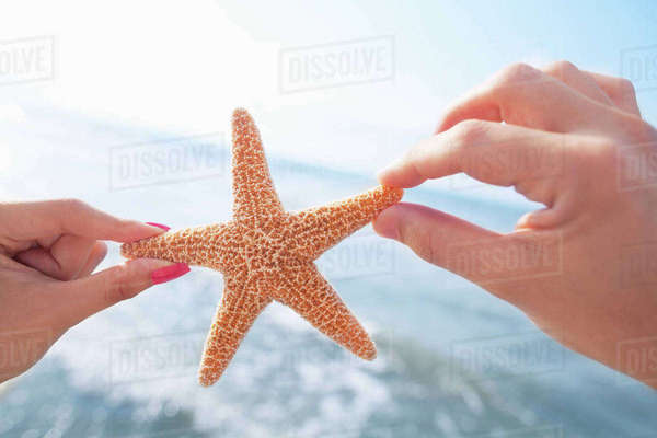 Couple's hands holding starfish at the beach Royalty-free stock photo