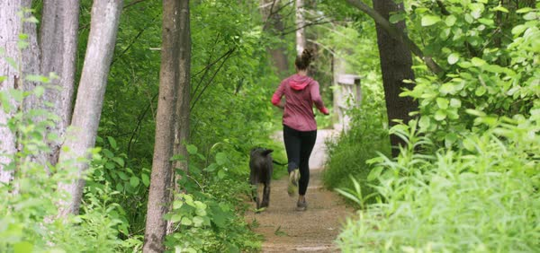Medium wide shot of a woman running with a dog Royalty-free stock video