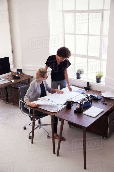 Two businesswomen studying documents in an office, vertical Royalty-free stock photo