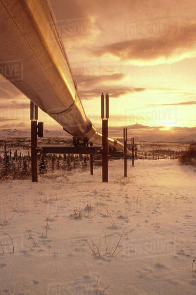 Trans_Ak Pipeline at Sunset Chugach Mtns Richardson Hwy Southcentral Alaska Rights-managed stock photo