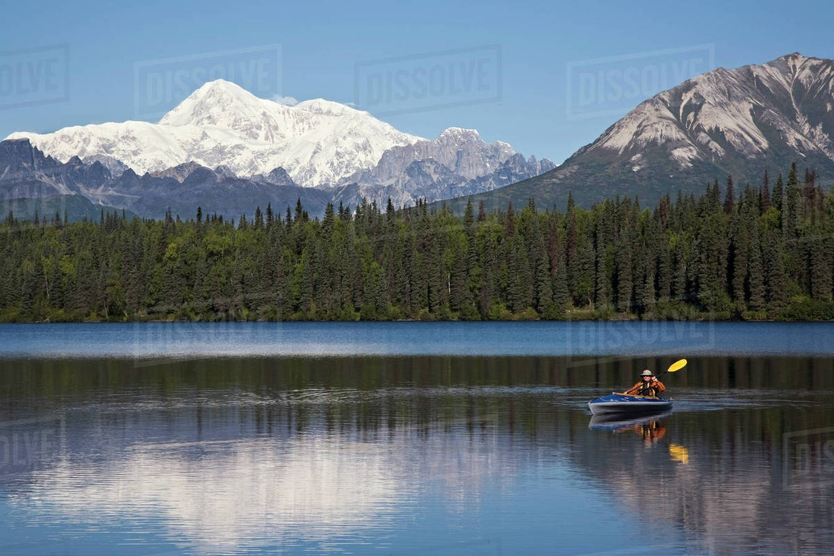 Man Paddling A Klepper Kayak On Byers Lake At Denali State Park  Mt   Mckinley Is Visible In The Background  August  Summer In The Interio Of  Alaska
