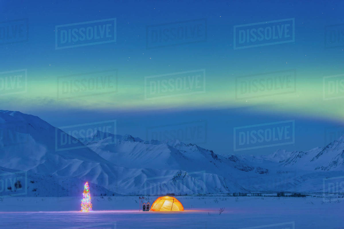 northern lights glow in the sky above a backpacking tent and lit christmas tree at twilight alaska range in the distance in winter isabel pass richardson