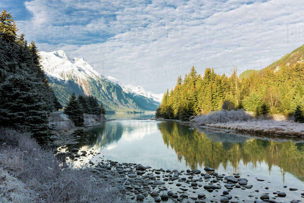 Scenic view of Chilkoot River flowing from Chilkoot Lake, Tongass National Forest, Chilkat Bald Eagle Preserve near Haines, Southeast Alaska, Winter Rights-managed stock photo
