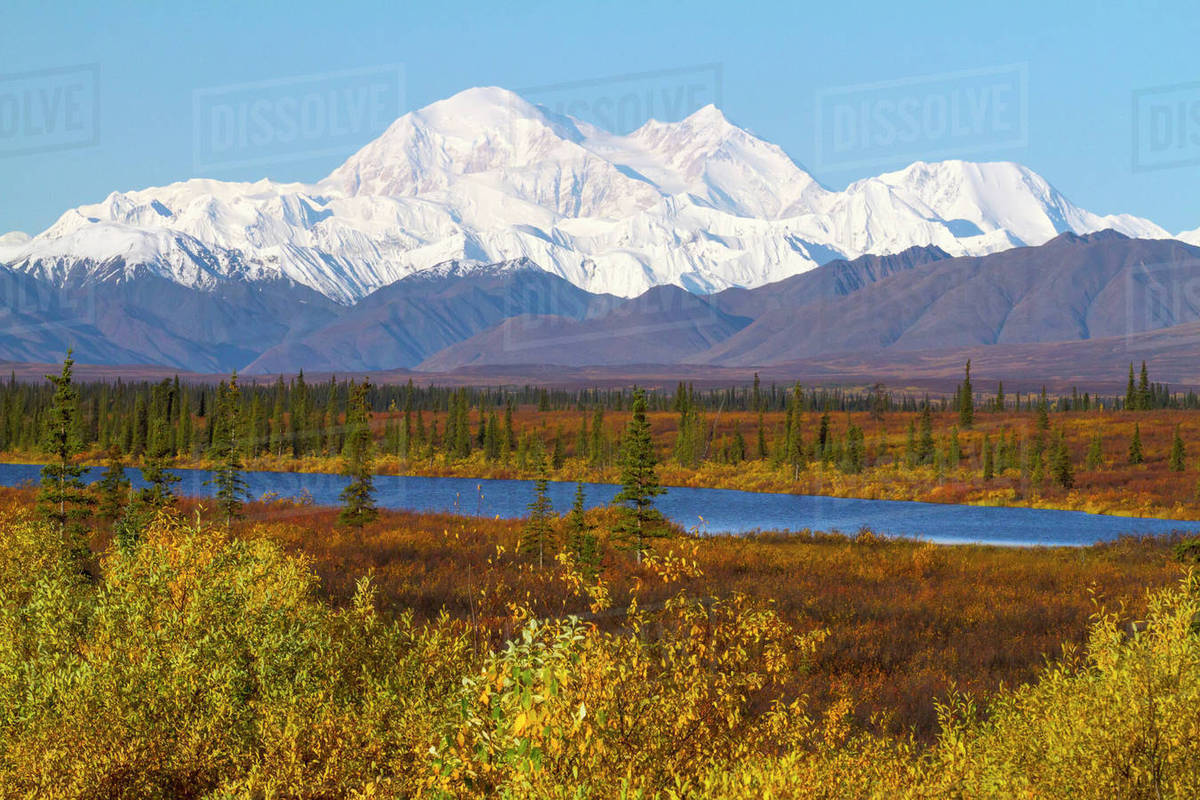 View Of Denali From The Parks Hwy South Of Cantwell