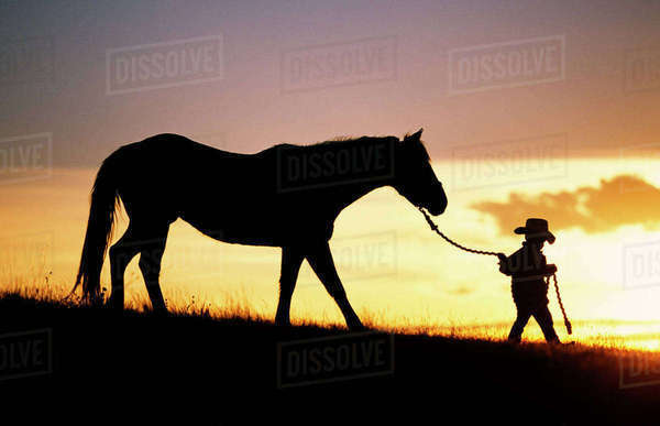 Hawaii, Silhouette Of Boy Leading Horse Along Grassy Hillside At Sunset. Rights-managed stock photo