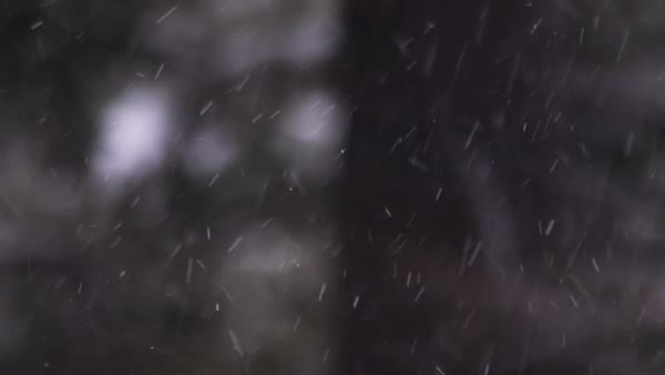Static shot of snowflakes Royalty-free stock video