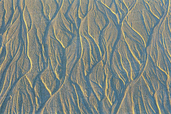 Pattern in Sand Royalty-free stock photo
