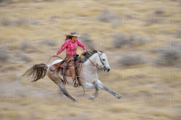 Blurred motion of cowgirl on horse galloping in wilderness, Rocky Mountains, Wyoming, USA Royalty-free stock photo