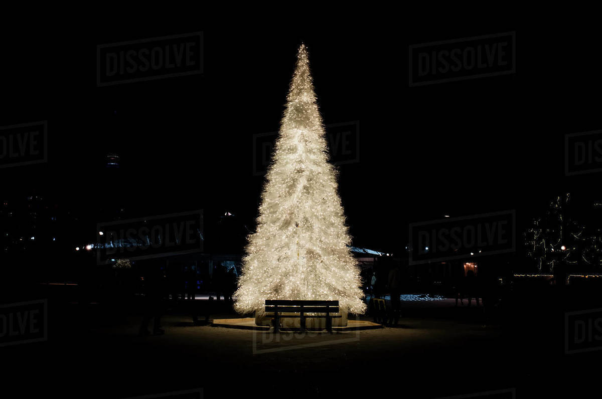 White christmas tree lit up in the dark Royalty-free stock photo