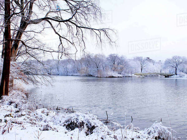 Bow bridge over lake at central park against clear sky during winter Royalty-free stock photo