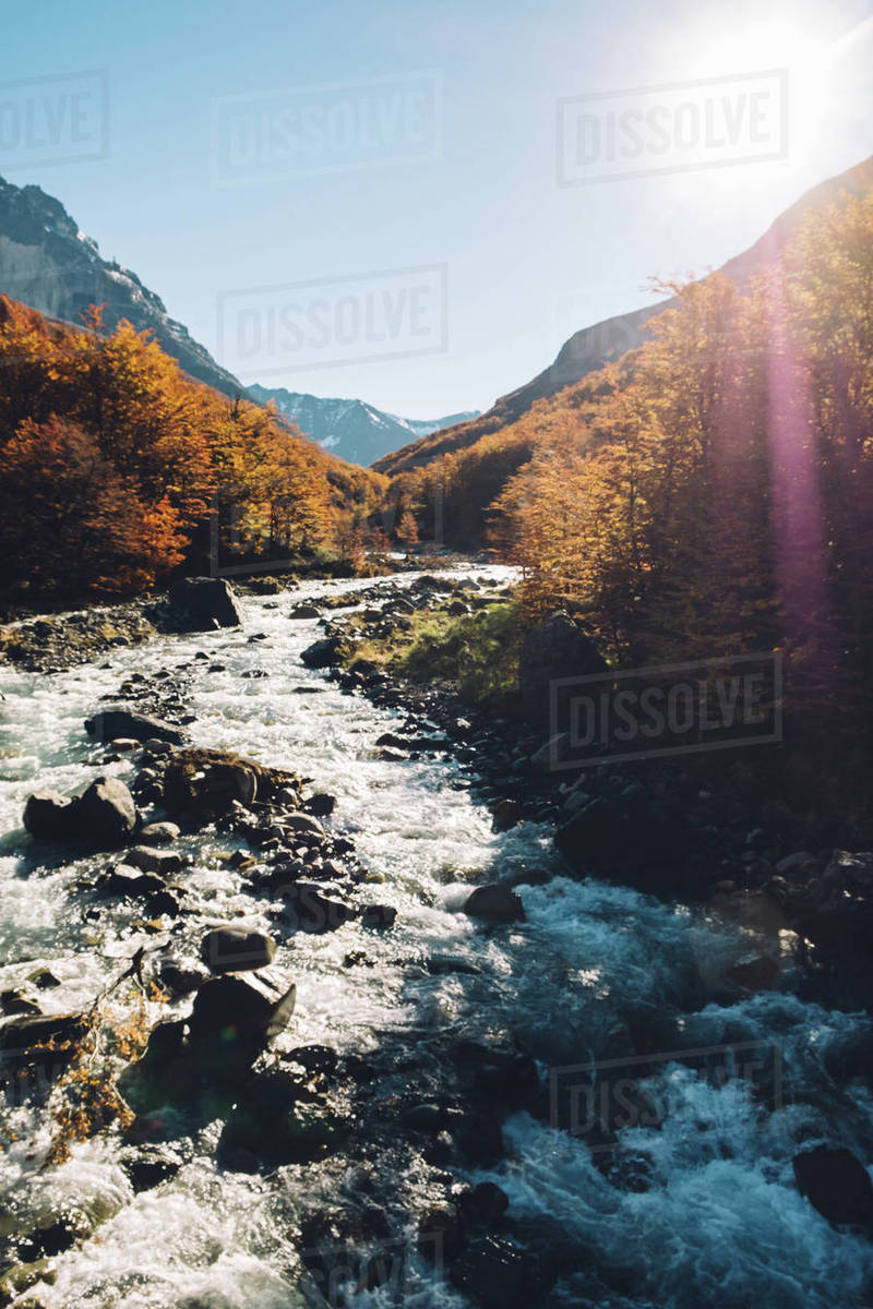 Scenic view of trees, a river and snowy mountains in autumn Royalty-free stock photo