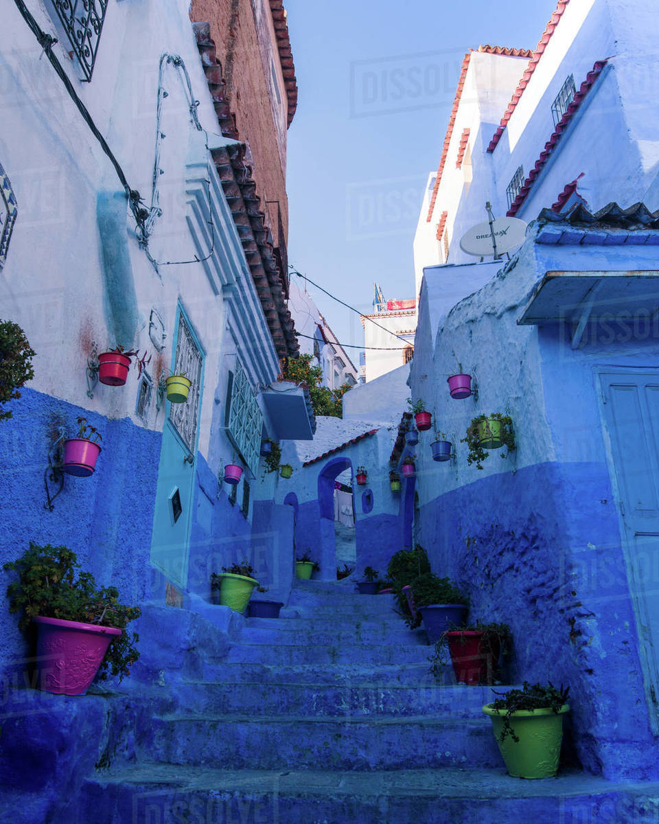 Chefchaouen flowerpots Royalty-free stock photo