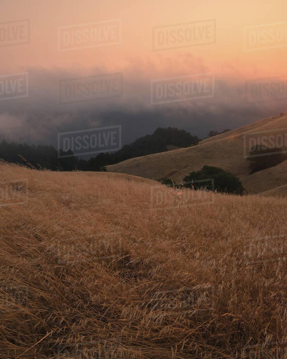 Mount Tam Sunset Mood Royalty-free stock photo