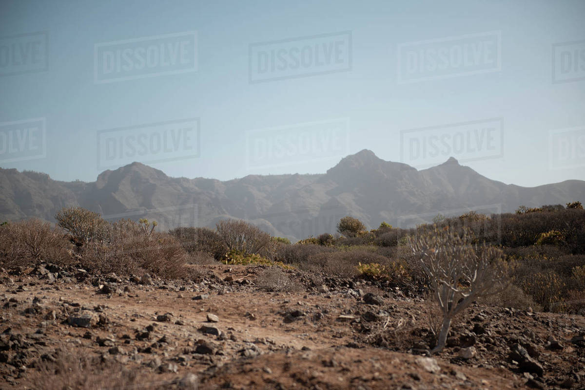 Desert landscape against mountains and blue sky during sunny day Royalty-free stock photo