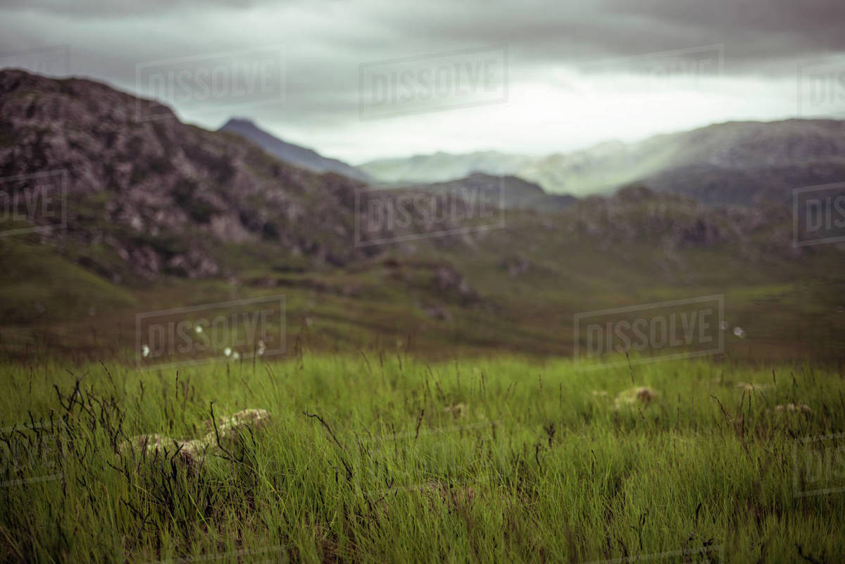 Sun hits mountains on moody storm day in highlands with grass in front Royalty-free stock photo