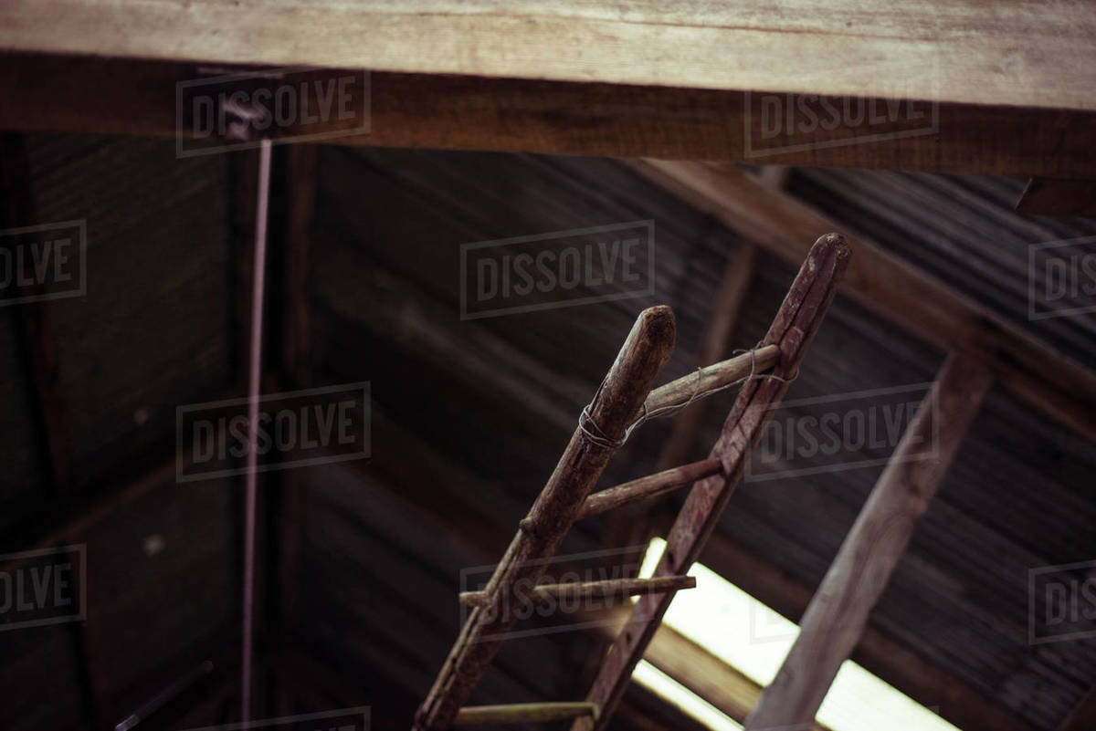 Old ladder in abandoned shed Royalty-free stock photo
