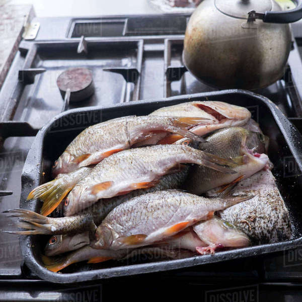 High angle view of fishes in tray on stove Royalty-free stock photo