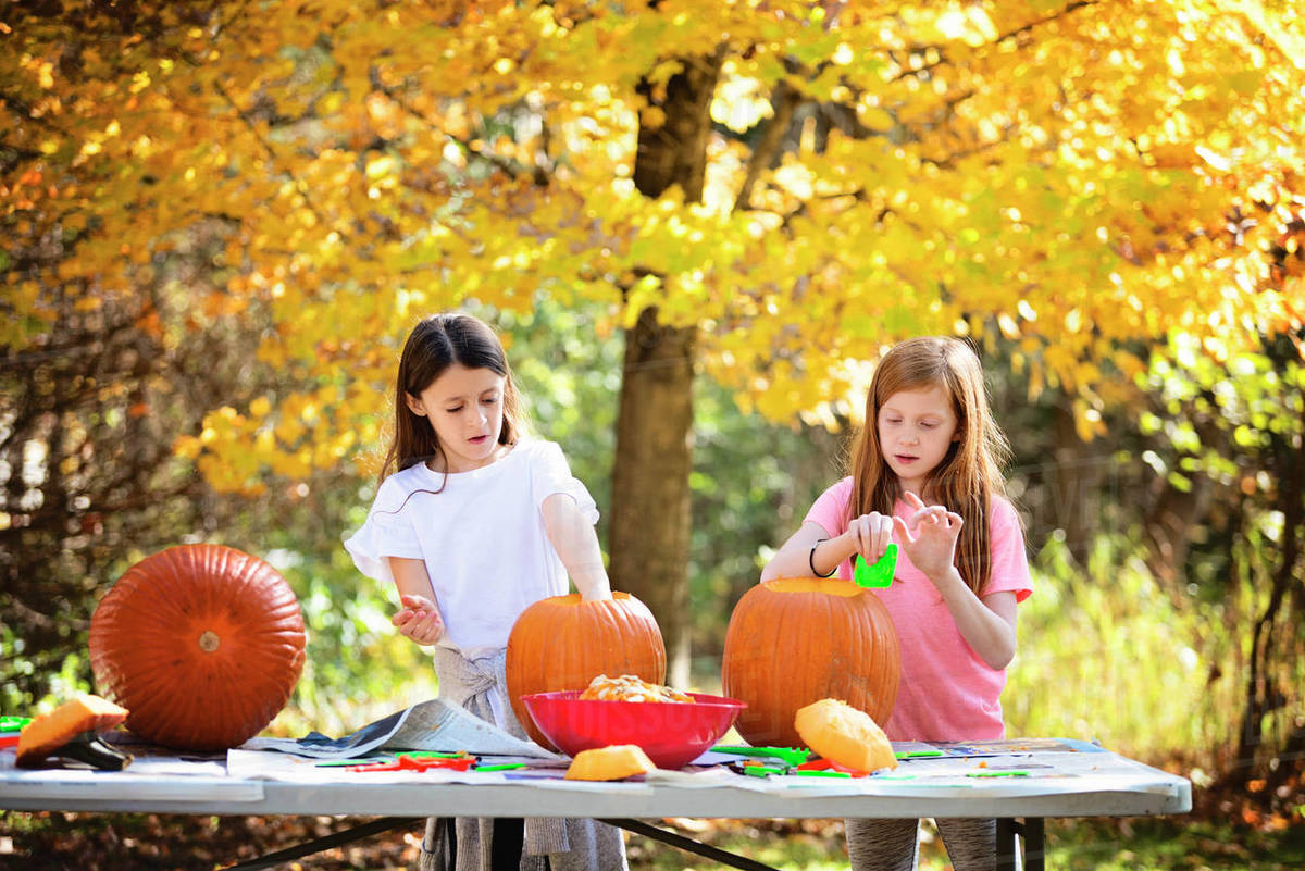 Two Young Girls Carving Pumpkins Outdoors Royalty-free stock photo