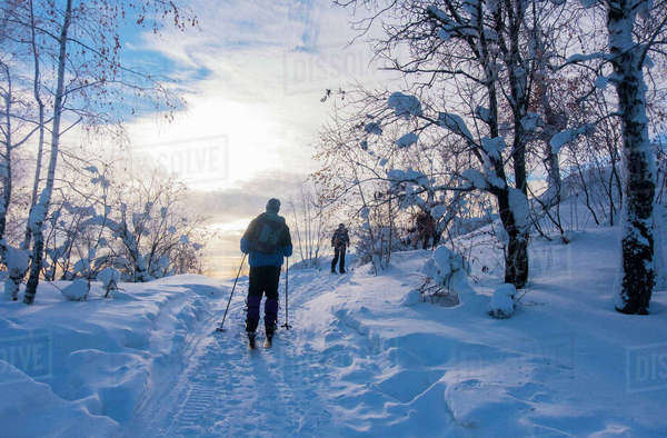 Rear view of skiers skiing on snow covered field against sky Royalty-free stock photo