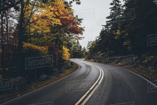 Empty country road amidst forest against sky Royalty-free stock photo