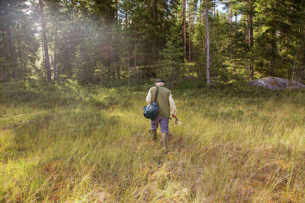 Sweden, Narke, Kiksbergen, Senior man with fishing rod walking through meadow towards forest Royalty-free stock photo