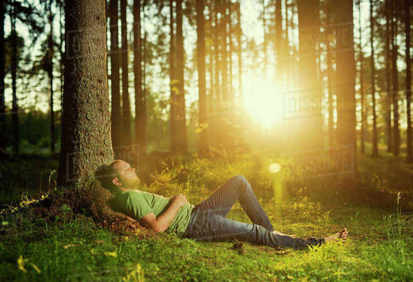 Finland, Heinola, Paijat-Hame, Man sleeping in spruce forest Royalty-free stock photo