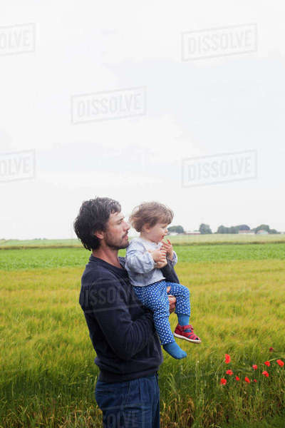 Sweden, Skane, Osterlen, Dad standing in fields and carrying daughter (2-3) Royalty-free stock photo