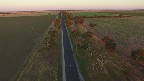 Forward flight above rural road among agricultural fields at sunset Royalty-free stock video