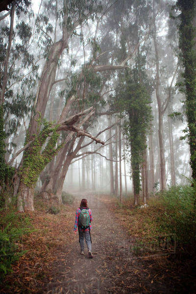 Korean woman in backpack walking in forest path Royalty-free stock photo
