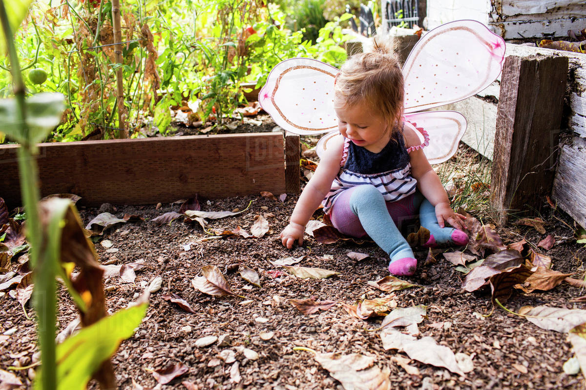 Caucasian baby girl wearing fairy wings in garden Royalty-free stock photo