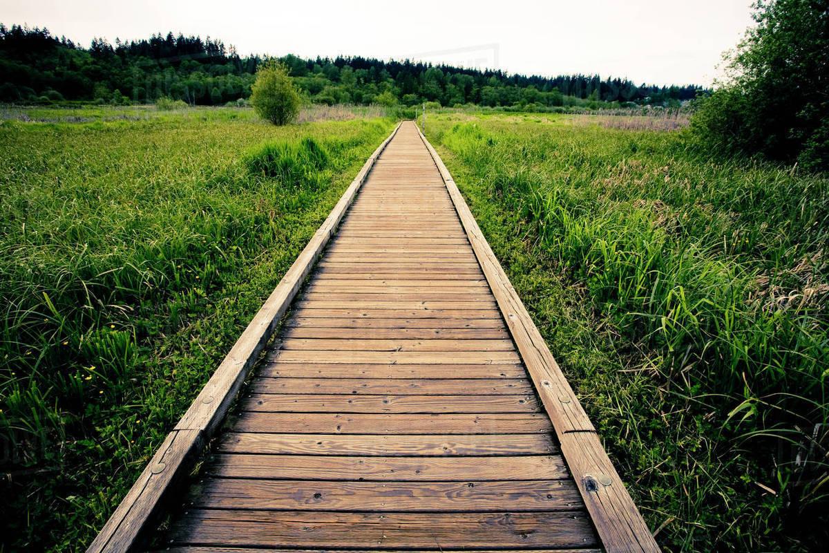 Wooden walkway in rural field - Stock Photo - Dissolve