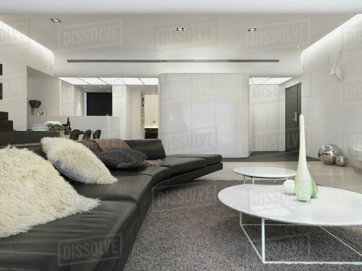 Stupendous View Down Modern Leather Sofa With Fur Pillows D145 201 750 Caraccident5 Cool Chair Designs And Ideas Caraccident5Info
