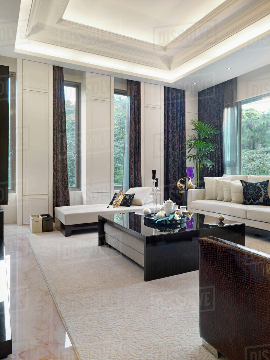 High End Contemporary Living Room With
