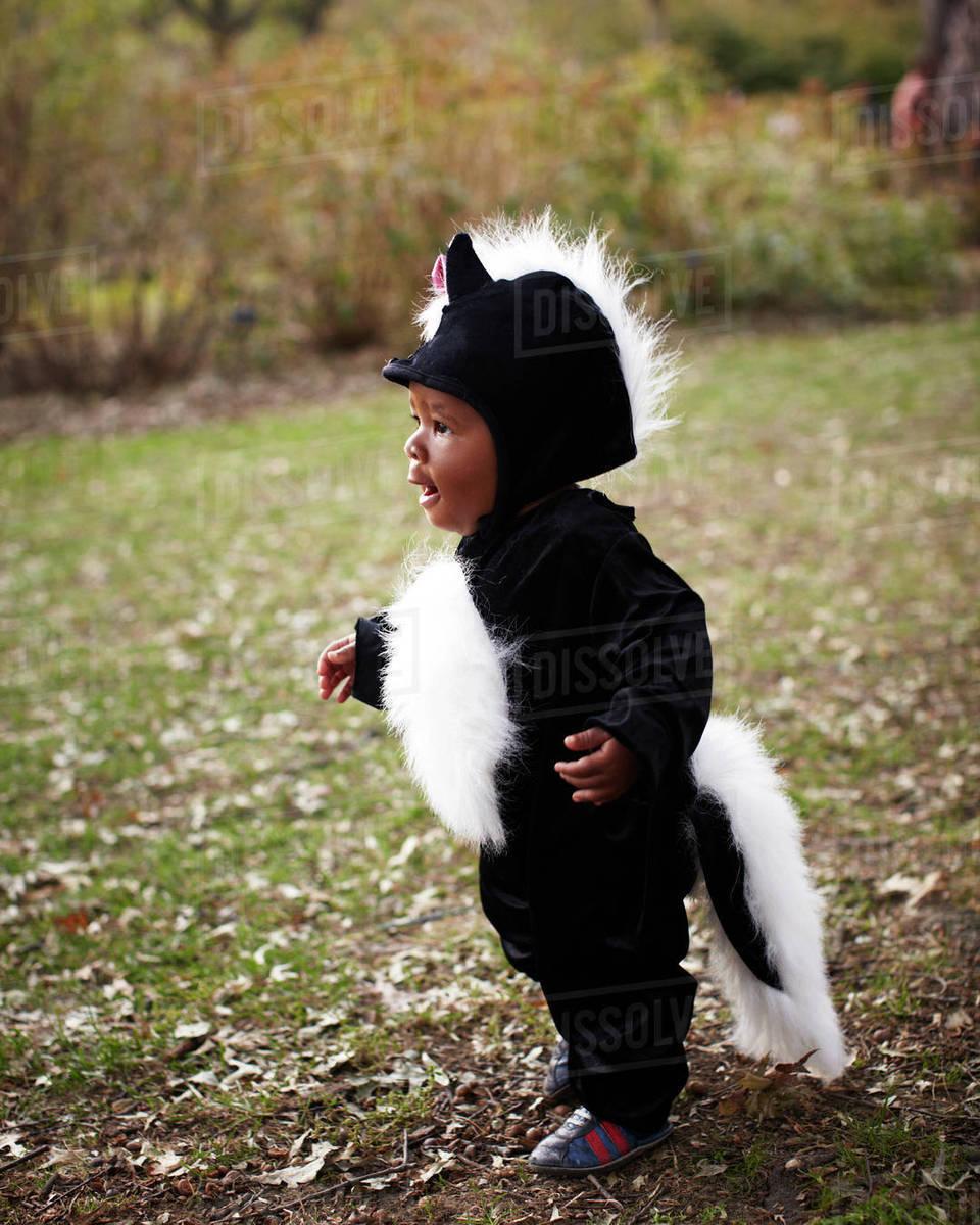 african american baby in skunk costume - stock photo - dissolve