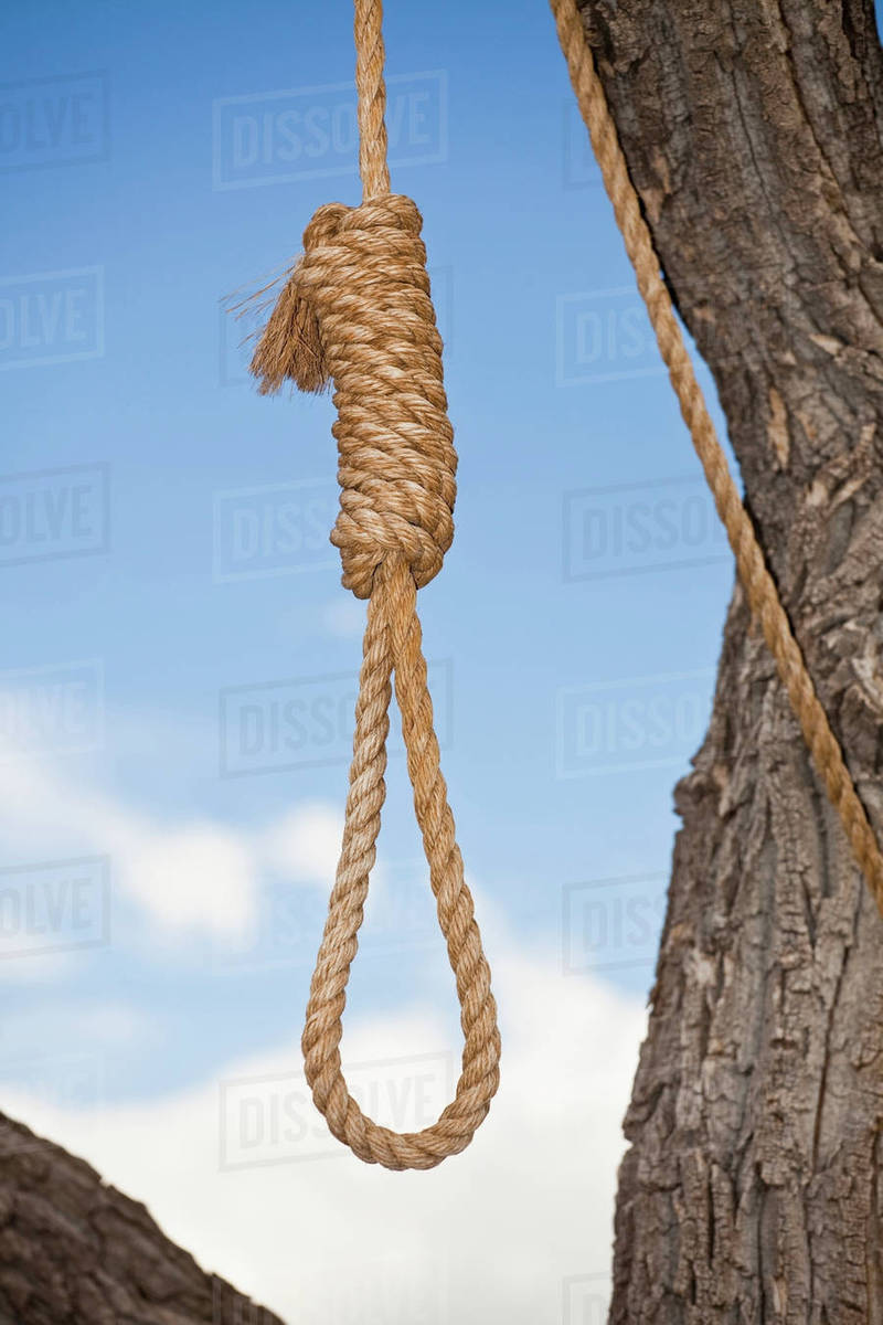 Image result for hangman's noose