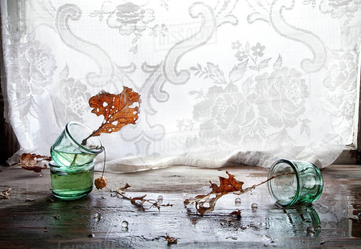 autumn leaves in broken glass vase
