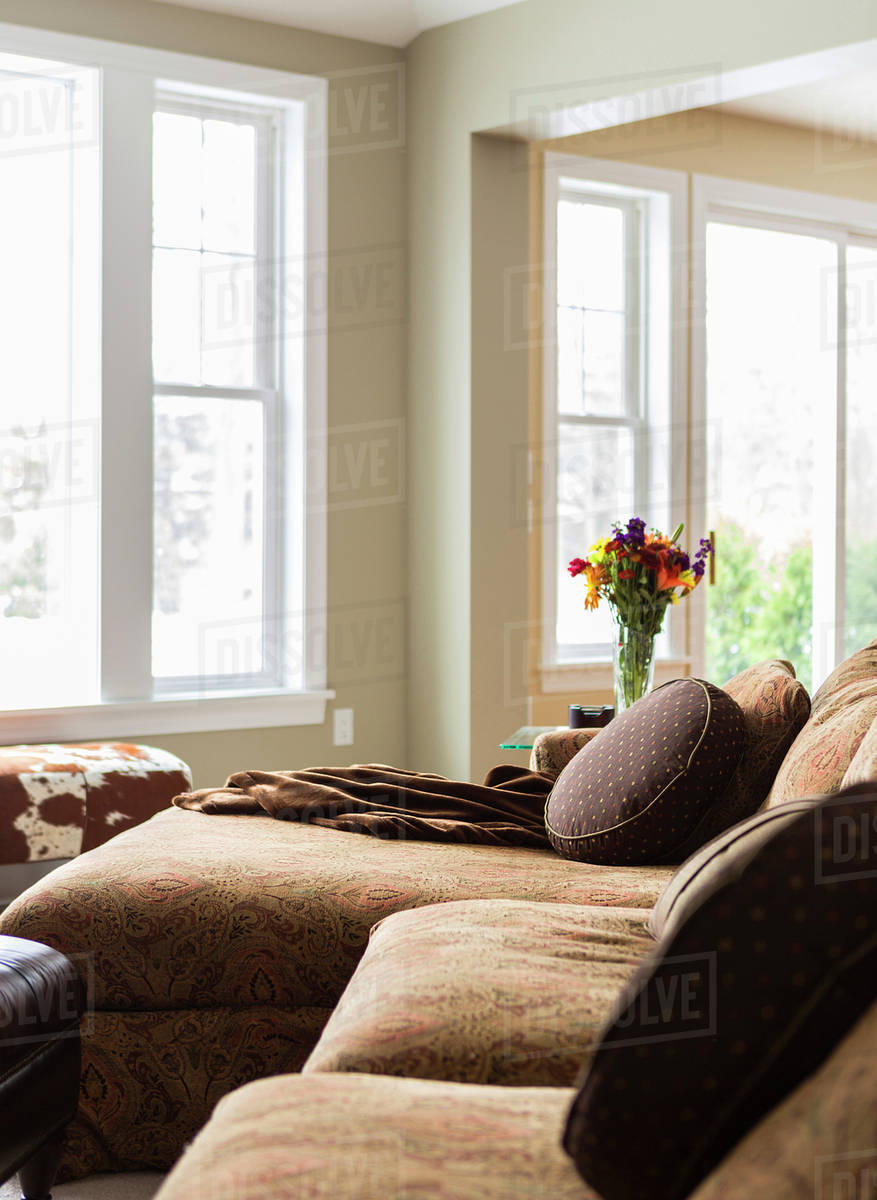 Pillows And Throw Blankets On Sofa In Living Room