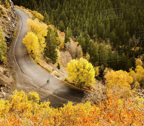 Aerial view of bicyclist on rural road Royalty-free stock photo