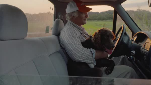 Hand-held shot of a man petting a dog in a truck Royalty-free stock video