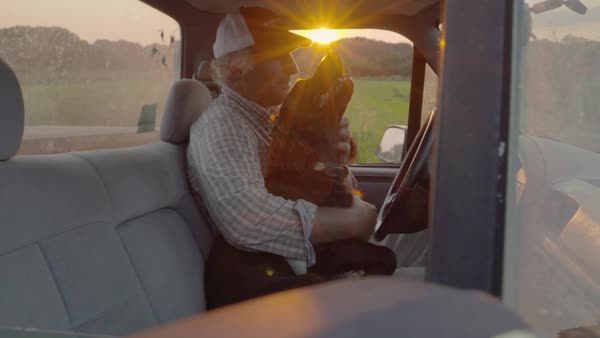 Slow motion shot of a man petting his dog in a truck Royalty-free stock video