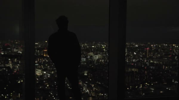 Hand-held shot of a man enjoying view of Tokyo cityscape at night Royalty-free stock video
